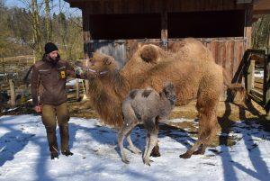 Gespräch mit dem Tierpfleger