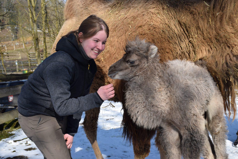 Tierfreunde kennenlernen