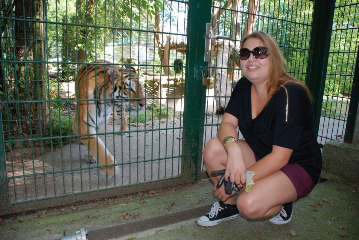 Namensgebung Tiger Rani Sophie