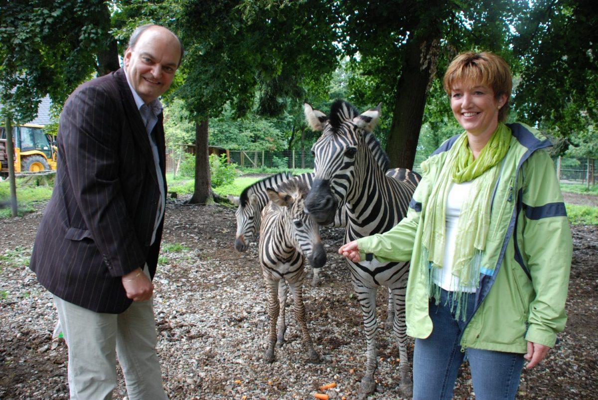 Patenschaft Zebra Chipo -