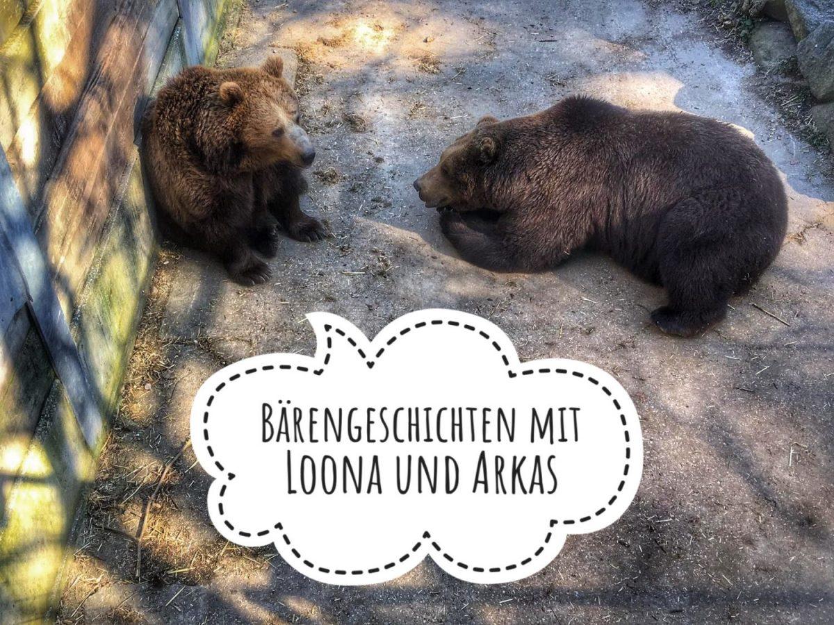 Braunbärengeschichten