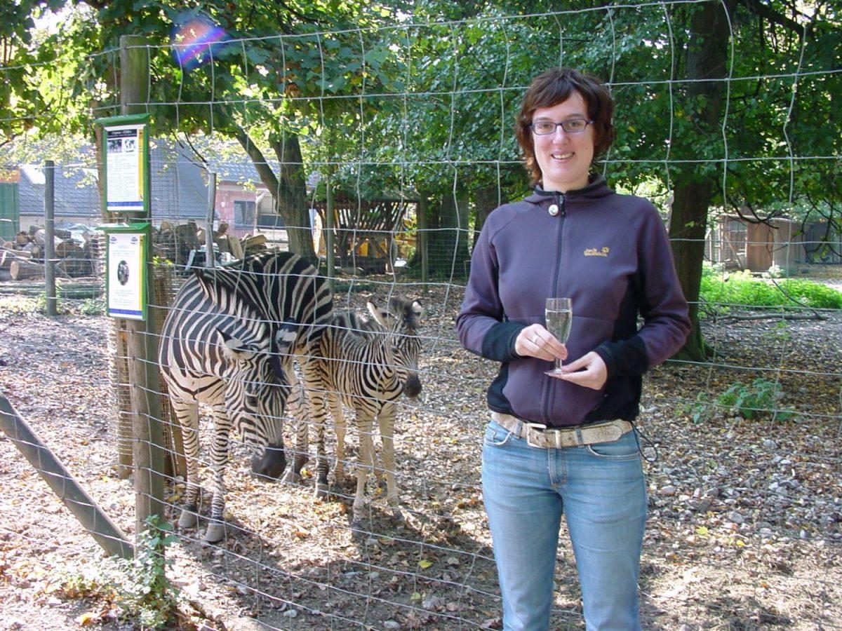 Zebra und Patin